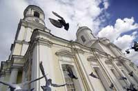 Александр Балтин: Цена идеала, голуби петербурга