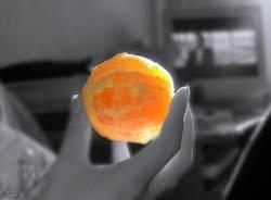 или просто Сюррософия  Солнышко