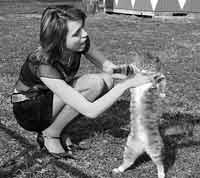 Дискретный обзор: И кот и рок-и ролл, КОТ В ПОДАРОК