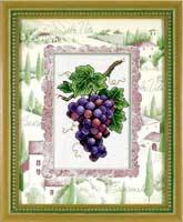 Винограда ли спелые кисти