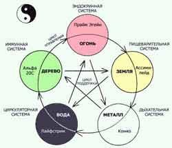Философия регенерации