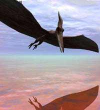 Авиаторы скопировали заданный эволюцией график штурма неба
