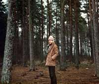 Виктор Сорокин 1983-Сосны в Швeции