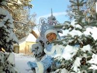 Тубольцев- Травинка и цветок-3, Снежность